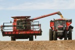 combine unloading beans into hopper pulled by tractor