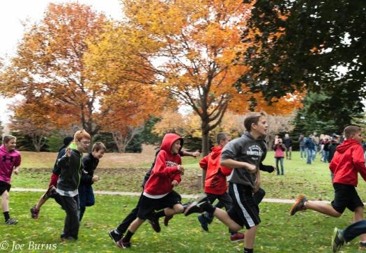 Bopyrs running