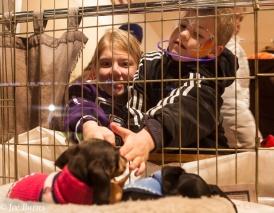 Kids pet puppies