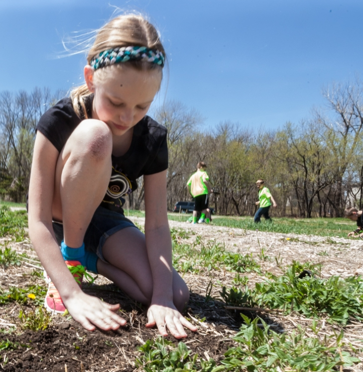 Kaia Stewart plants a native plant.