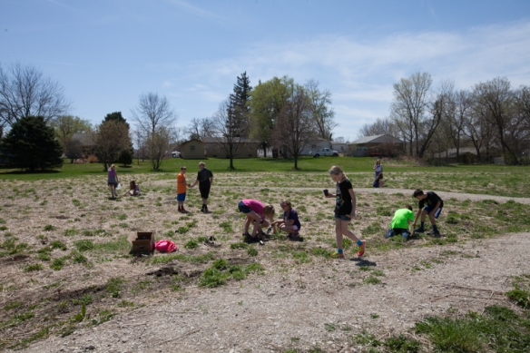 Students planting in the meadow area.