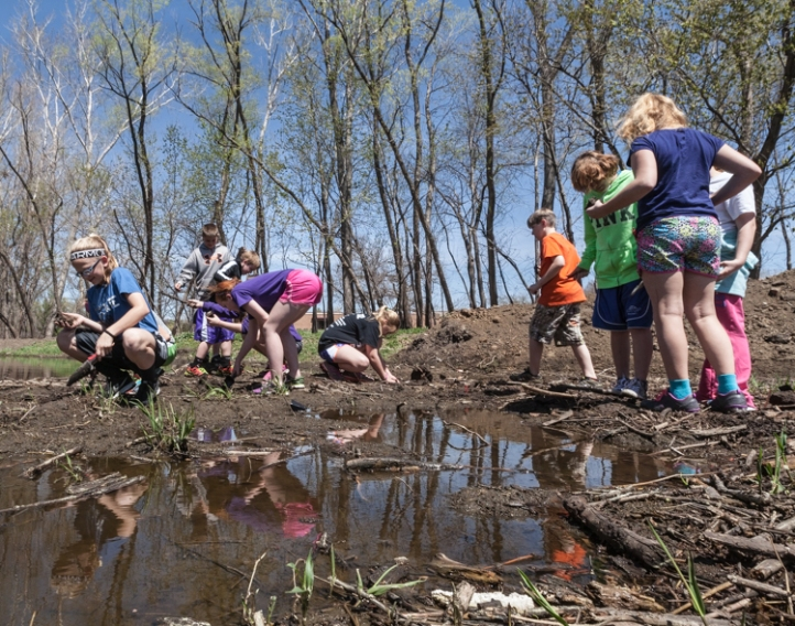 Fifth graders planting in wetland area.