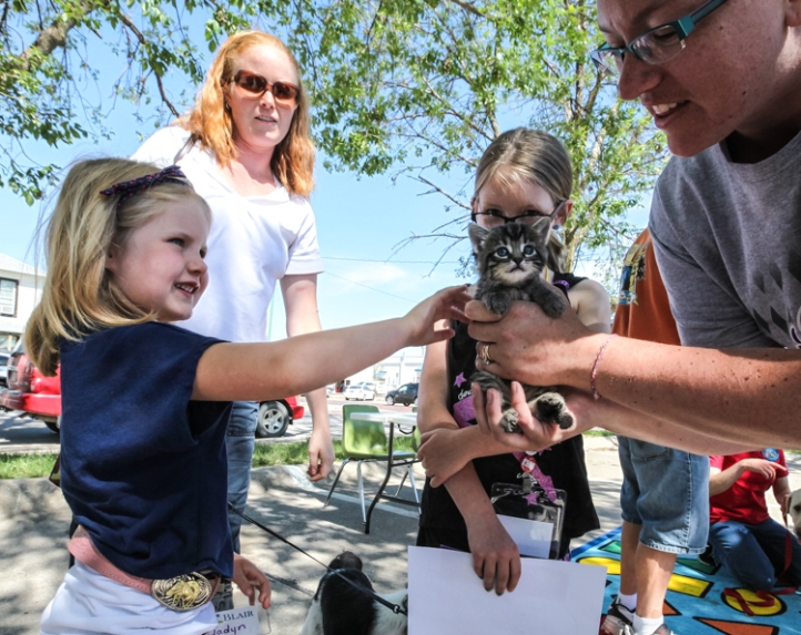 Jayden Smithson pets a kitten during the Blair Library Pet expo.