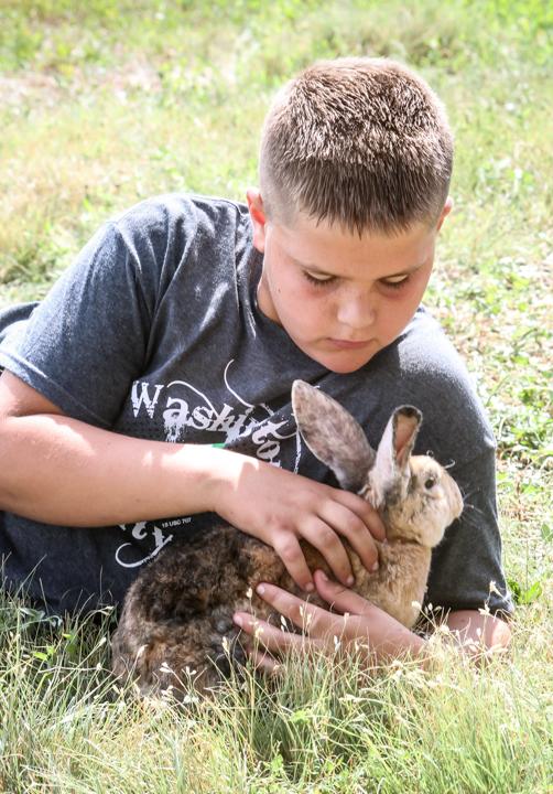 Jake Stirek babysits a friend's bunny.