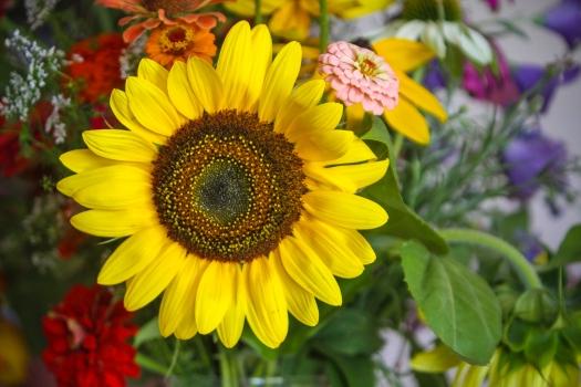 Sunflower in bouquet