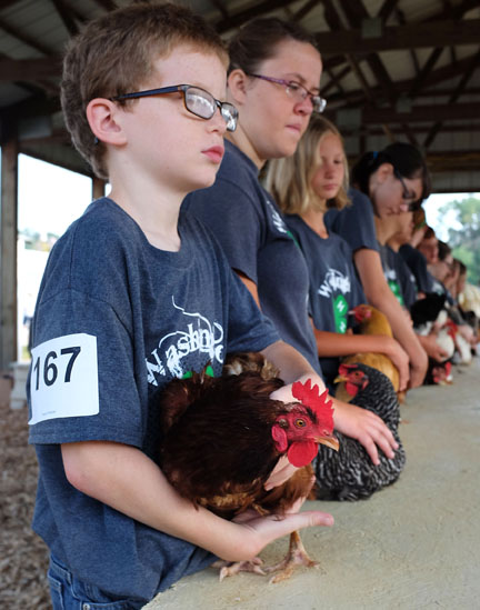 Jason Preister waits his turn in showmanship competition.