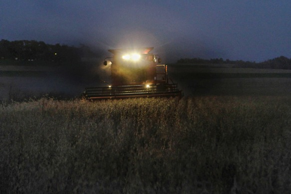 Gerald Eskilsen, harvests soybeans from a field near country roads 11 and 16 in north-west Washington County Monday Oct. 20