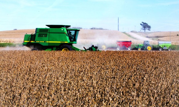 Ron Andreasen harvests soybeans on county road 26 north of Kennard.