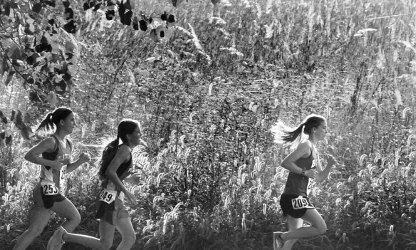Magdalene O'Brien runs  ahead of two Platteview runners at the Blair Cross Country Invitational held at Arbor Park Middle School.