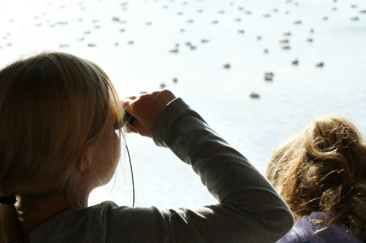 Leah Wehrli with binoculars and Layla Cromwell observe and write about the geese and ducks they observe on DeSoto Lake in November.