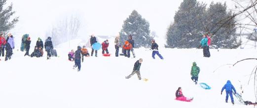 cropped-arbor-sledding-party020849joeburns-1626.jpg
