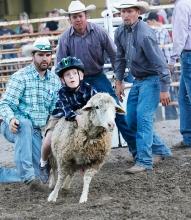 Mutton buster Hayden Diekmann Saturday night rodeo