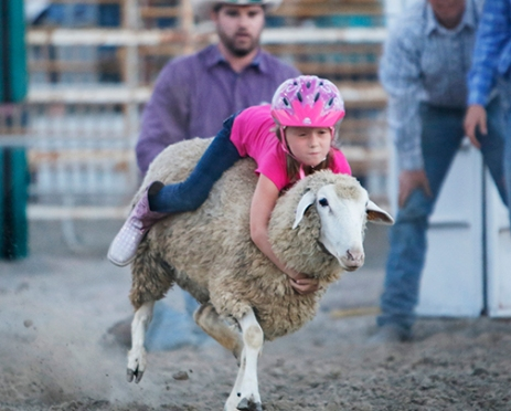 Mutton Buster Kyleigh Logemann Friday Rodeo