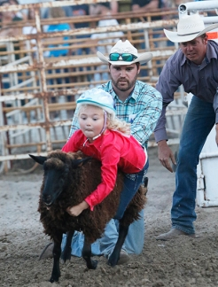 Mutton buster Quinn Wilmott Saturday night rodeo
