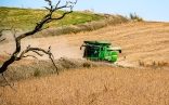 Soybean Harvest, District Track