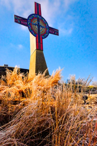 Native grasses at the foot of Tower of the Four Winds covered in ice.