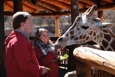 Kevin and Emily feed giraffe at at Cheyenne Canyon Zoo, Colorado Springs, CO.