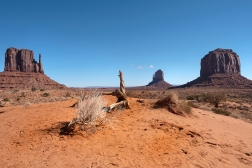 Monument Valley Navajo Tribal Park was a popular western film location for John Ford and John Wayne western films.