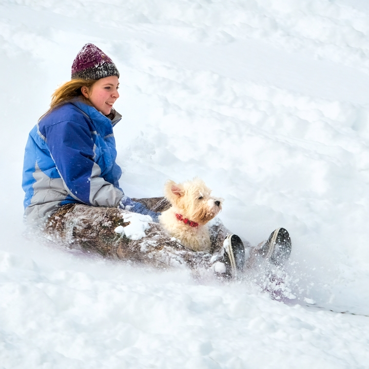 Madyson Ray takes dog Maggie for a ride down a snowy hill at Ralph Steyer Park Sunday after noon.